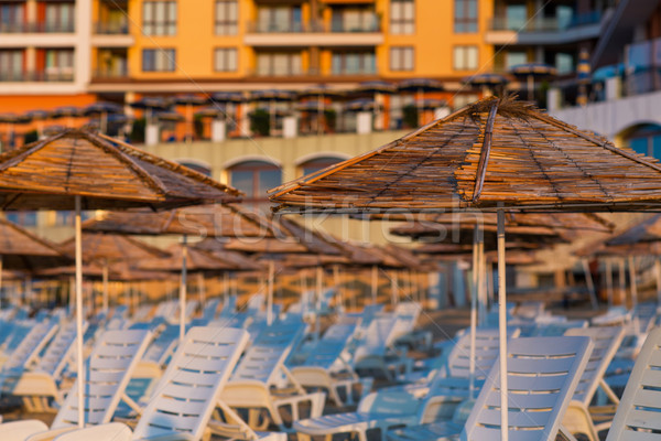 美しい 表示 リゾート ビーチ デッキ チェア ストックフォト © Len44ik