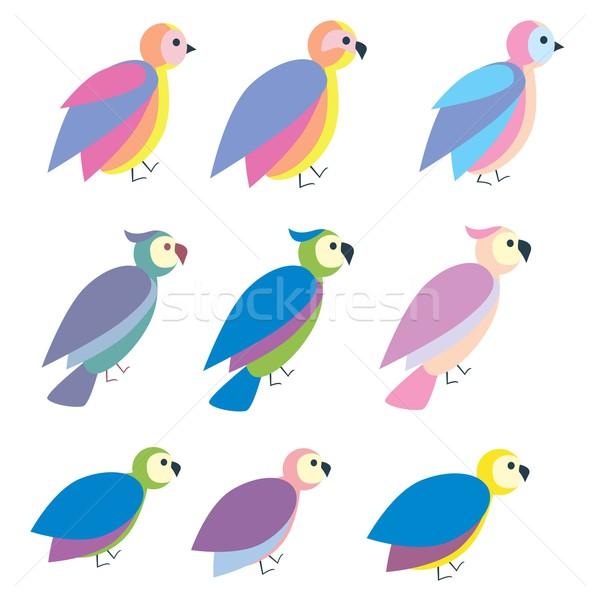 Establecer cute colorido aves icono ilustración Foto stock © Len44ik