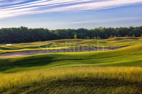 Perfect wavy ground with green grass on a golf field Stock photo © Len44ik