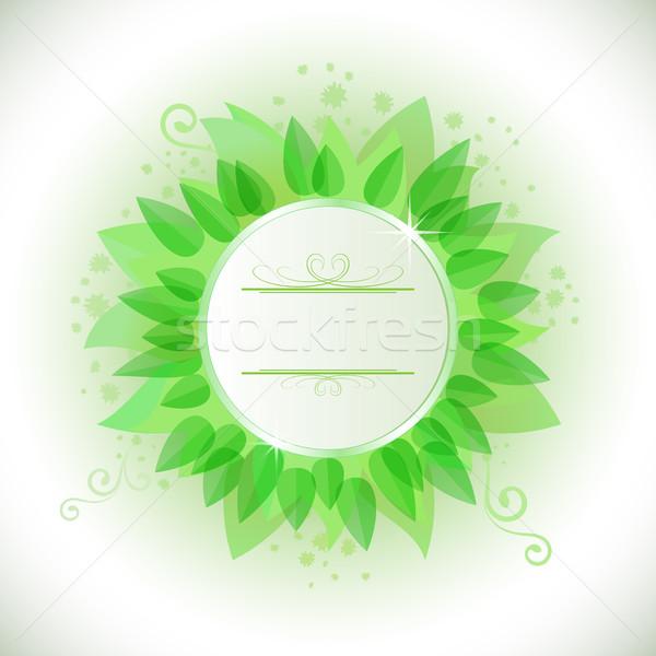 Résumé feuilles vertes cadre espace de copie nature fond Photo stock © lenapix