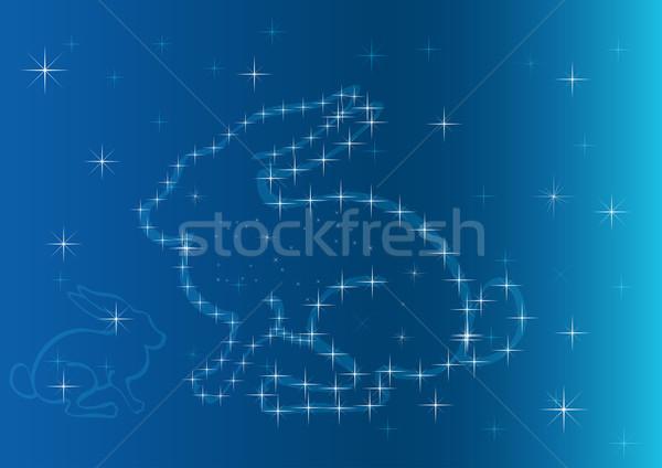 аннотация заяц звезды китайский символ Новый год Сток-фото © lenapix