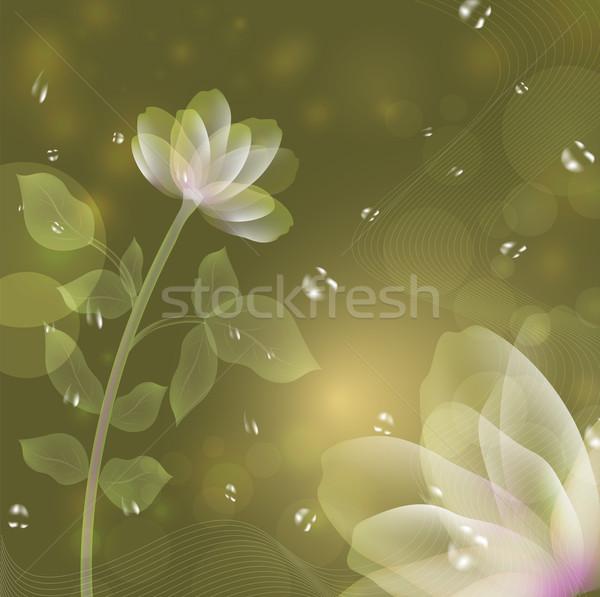 Piękna fantasy kwiat zielone kwiaty liści Zdjęcia stock © lenapix
