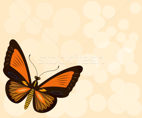 Beige background with butterfly and copy space. Stock photo © lenapix