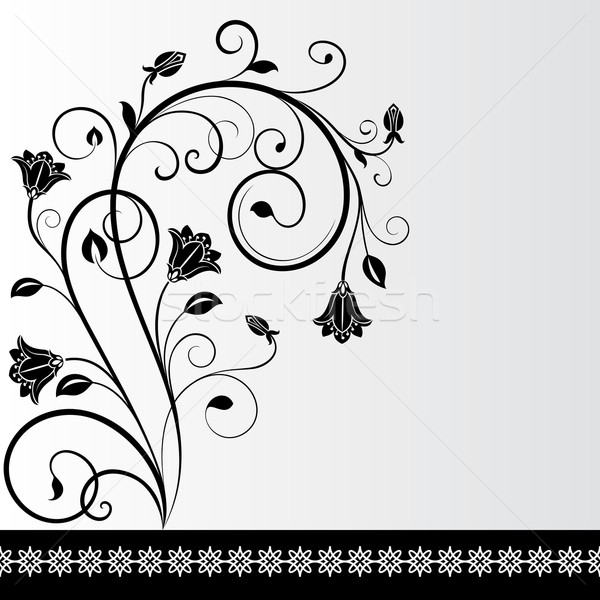 Black and white flower card design with copy space.  Stock photo © lenapix