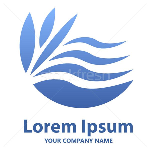 Abstract blu ondulato emblema logo design vettore Foto d'archivio © lenapix