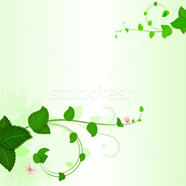 Green branches with leaves spring background Stock photo © lenapix