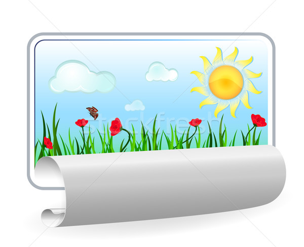 Summer in paper frame with curl isolated on white background.  Stock photo © lenapix