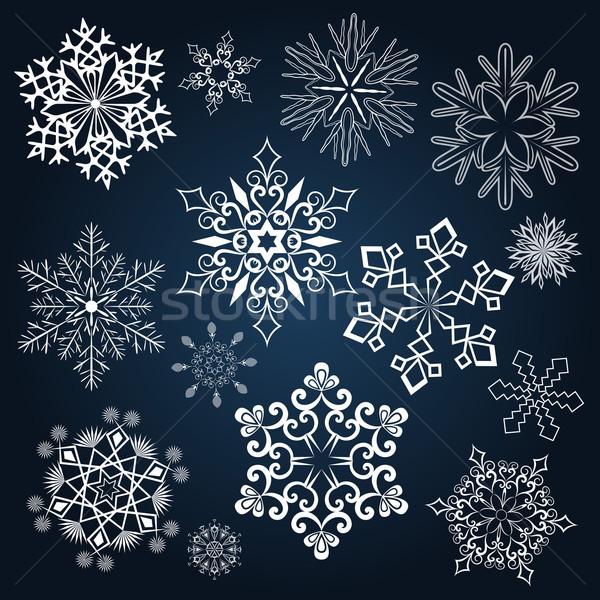 Conjunto floco de neve formas isolado escuro azul Foto stock © lenapix