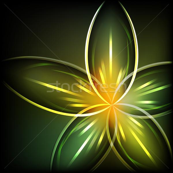 Zöld fény virág vektor tavasz levél szépség Stock fotó © lenapix