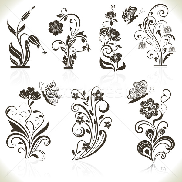 Floral flower vector design elements Stock photo © lenapix