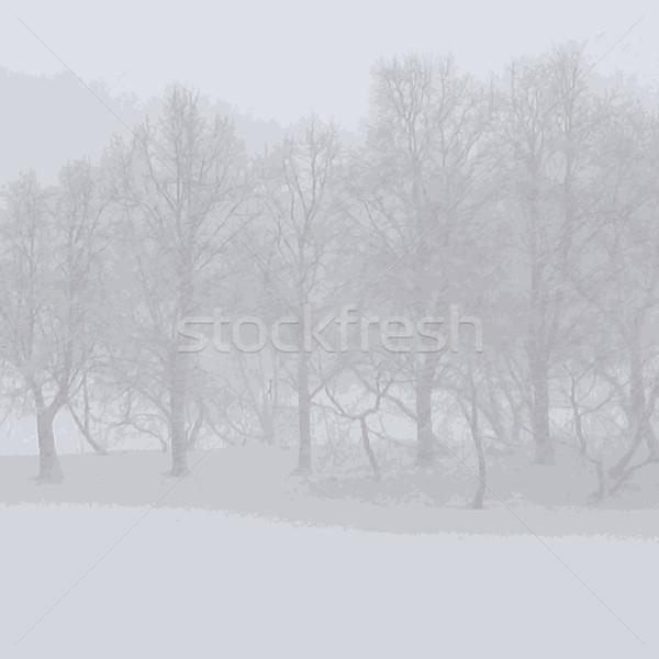 抽象的な 自然 ツリー 美 平和 地平線 ストックフォト © Lenlis