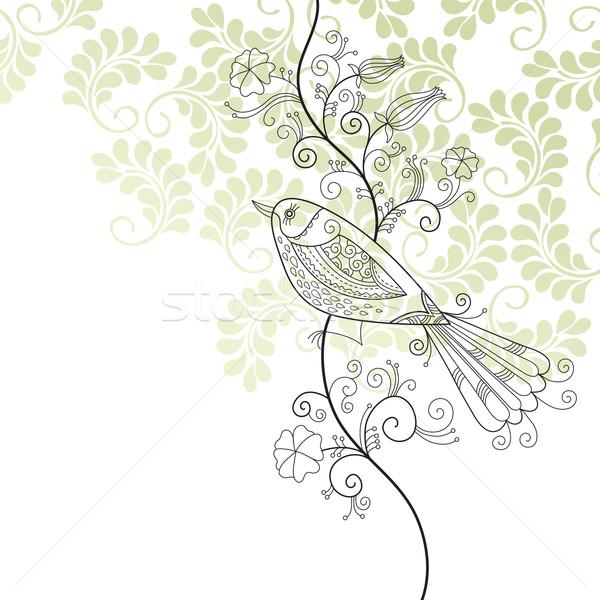 実例 グリーティングカード 鳥 春 夏 白 ストックフォト © Lenlis