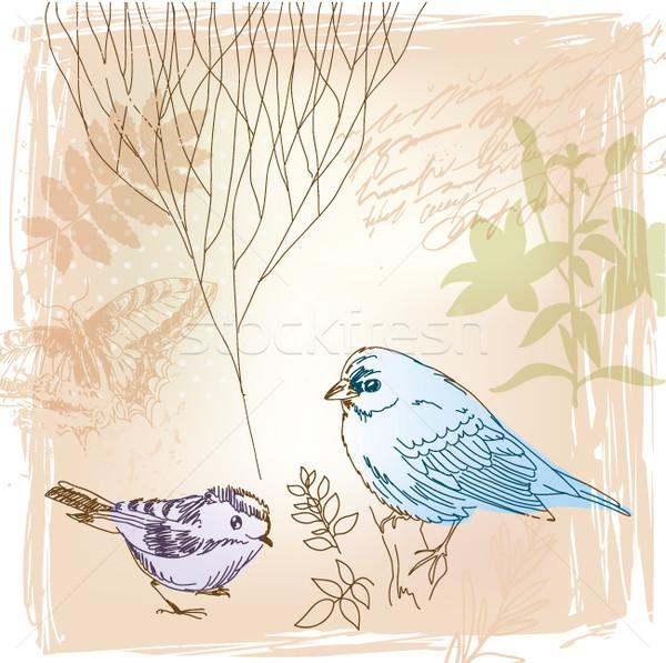 Vecteur oiseaux floral printemps papillon Photo stock © Lenlis