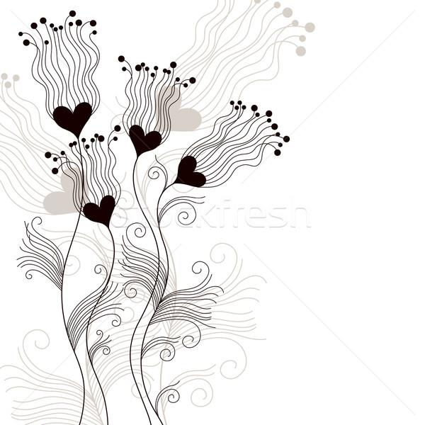 花 白い花 白 葉 歳の誕生日 背景 ストックフォト © Lenlis