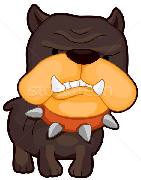 сердиться собака бык Cartoon бульдог изолированный Сток-фото © lenm