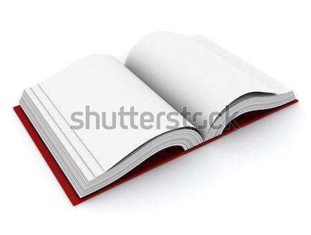 Open Book Stock photo © lenm