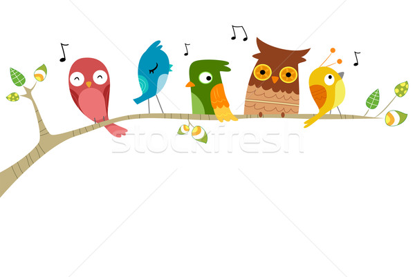 Aves cantando ilustração ramo árvore projeto Foto stock © lenm