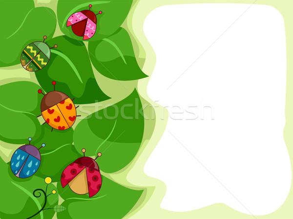 Katicabogarak illusztráció terv keret rajz rovar Stock fotó © lenm