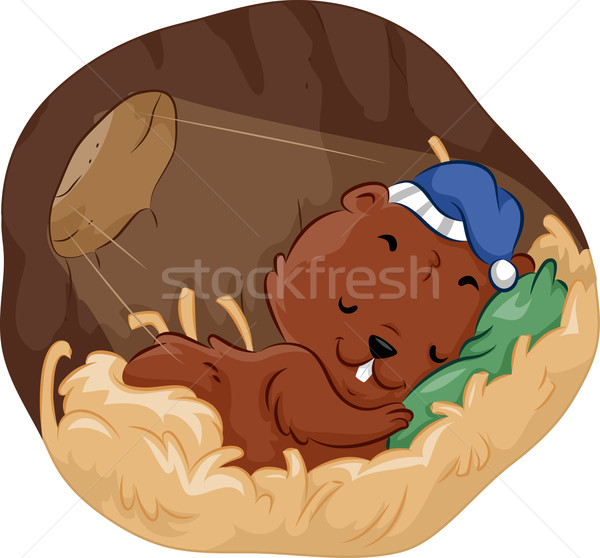 Rodent Burrow Sleep Stock photo © lenm