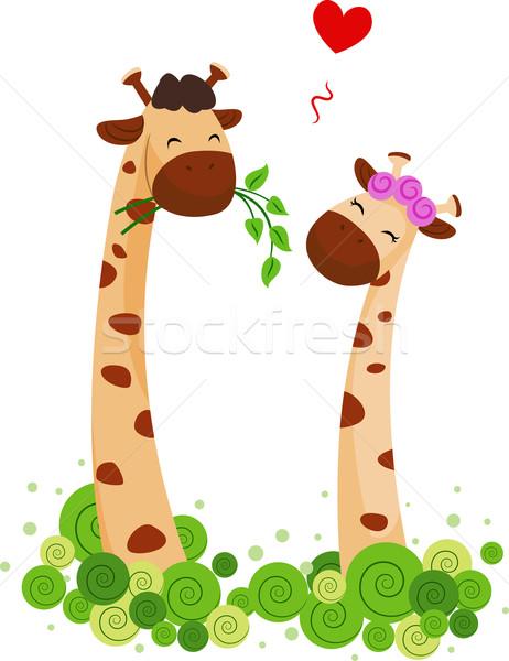 Giraffe Couple Stock photo © lenm