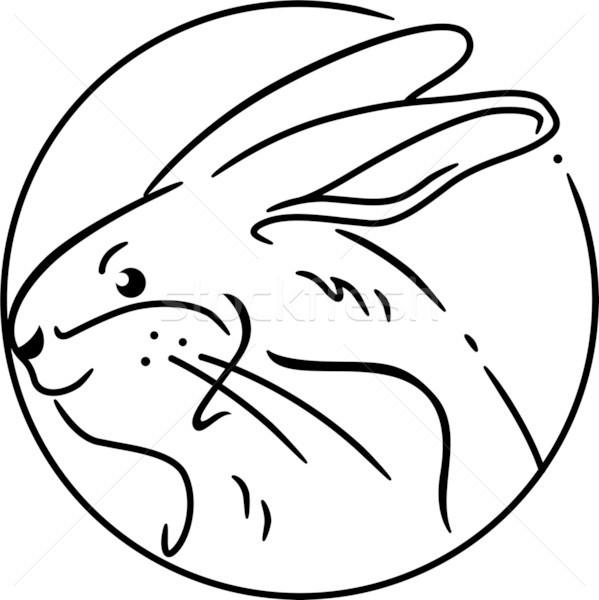 Stock photo: Year of the Rabbit