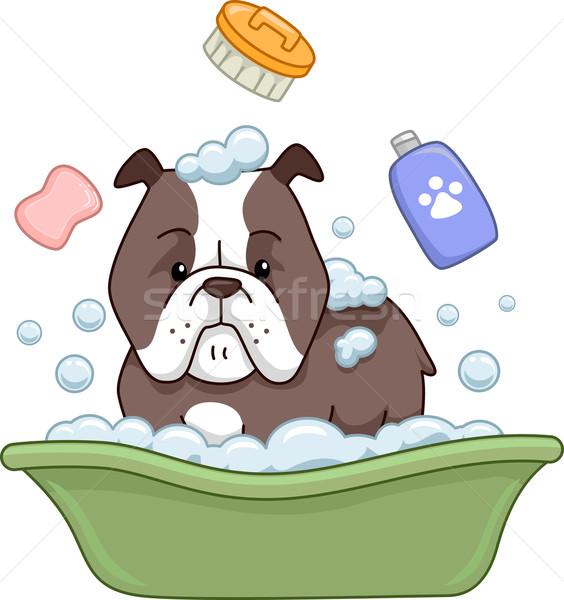 Stok fotoğraf: Köpek · banyo · örnek · boğa · dijital