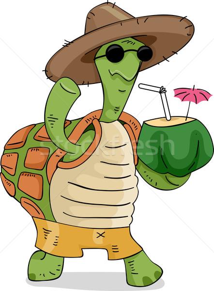 черепахи кокосового пить иллюстрация соломенной шляпе Сток-фото © lenm