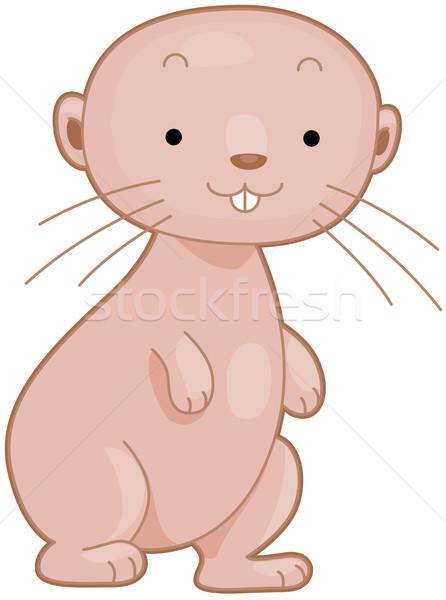 Naakt mol rat illustratie glimlachend clipart Stockfoto © lenm