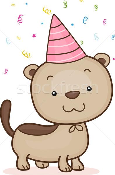 Birthday Ferret Stock photo © lenm