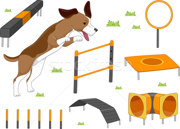Dog Agility Objects Stock photo © lenm
