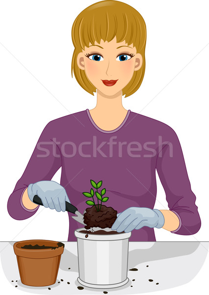 Girl Plant Repotting Stock photo © lenm