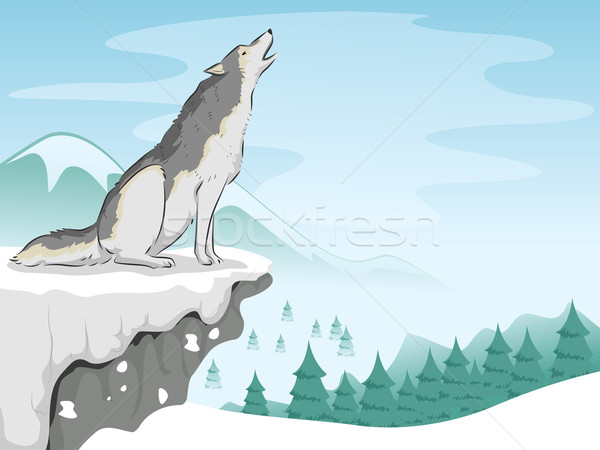 Wolf Snow Mountain Stock photo © lenm