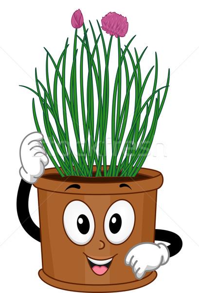 Snidling kabala illusztráció edény egészség zöld Stock fotó © lenm