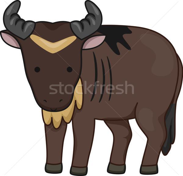 Wildebeest Stock photo © lenm