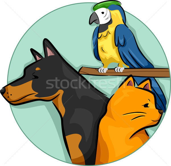Pets Design Elements Stock photo © lenm