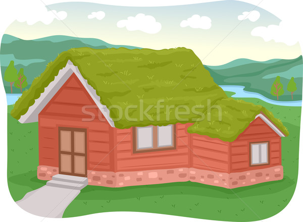 Green Roof Stock photo © lenm