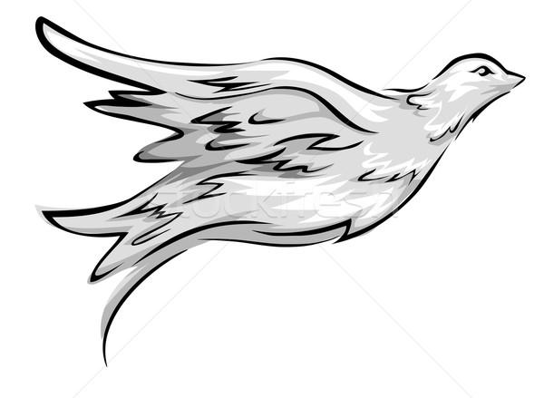 Colomba illustrazione battenti arte uccello pace Foto d'archivio © lenm
