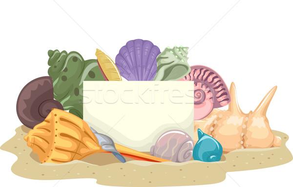 Shells Blank Board Stock photo © lenm