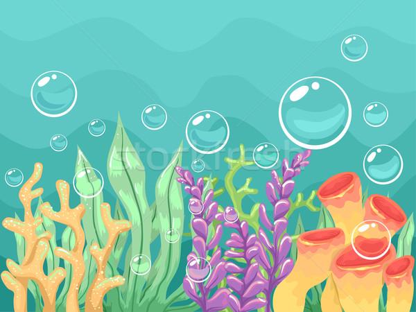 Podwodne kolorowy ilustracja inny morza ocean Zdjęcia stock © lenm