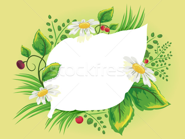 Herbal Frame Leaf Outline Stock photo © lenm