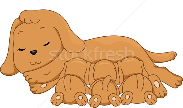 Amamentação cão ilustração feminino filhotes de cachorro digital Foto stock © lenm