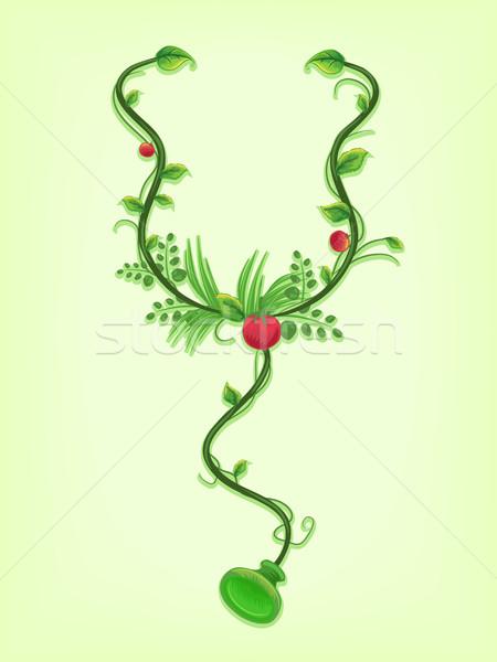 Stéthoscope vignes médecine alternative illustration autour santé Photo stock © lenm