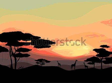 Safari закат иллюстрация сцена силуэта графических Сток-фото © lenm