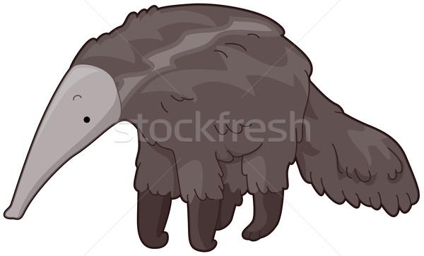 Anteater Stock photo © lenm
