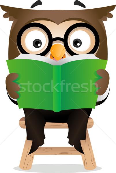 Reading Owl  Stock photo © lenm