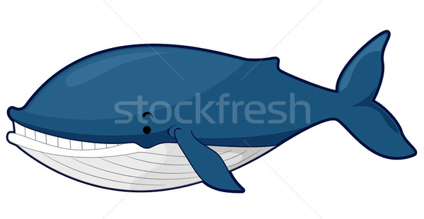 Blue Whale Stock photo © lenm