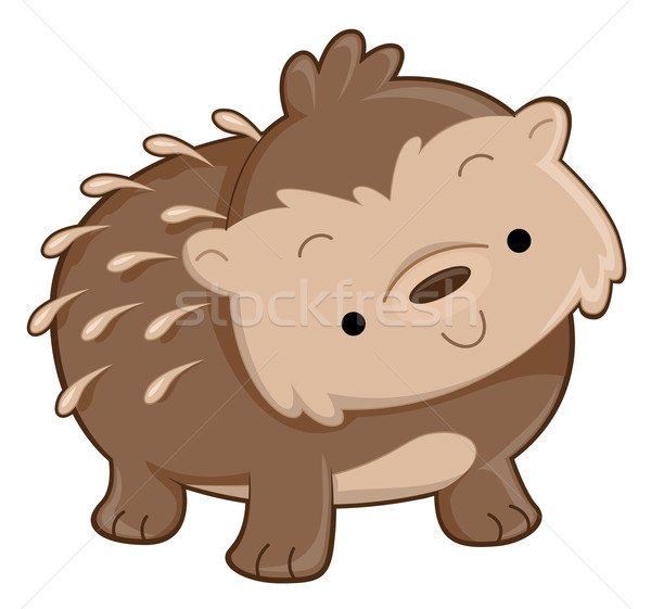Sevimli kirpi hayvan karikatür örnek Stok fotoğraf © lenm
