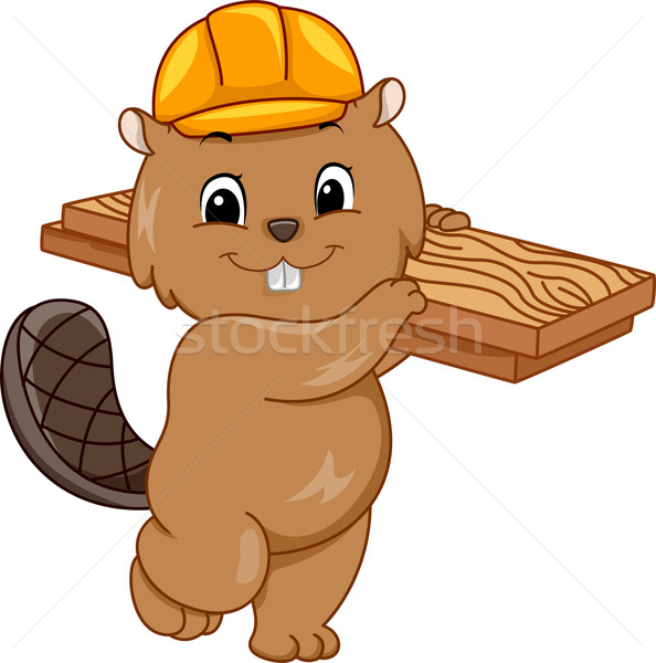 Construction Beaver Stock photo © lenm