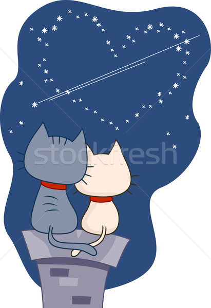 Stargazing Cats Stock photo © lenm