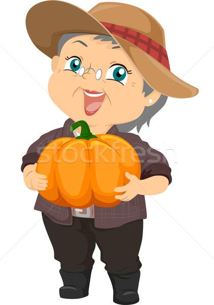 Pumpkin Harvest Stock photo © lenm
